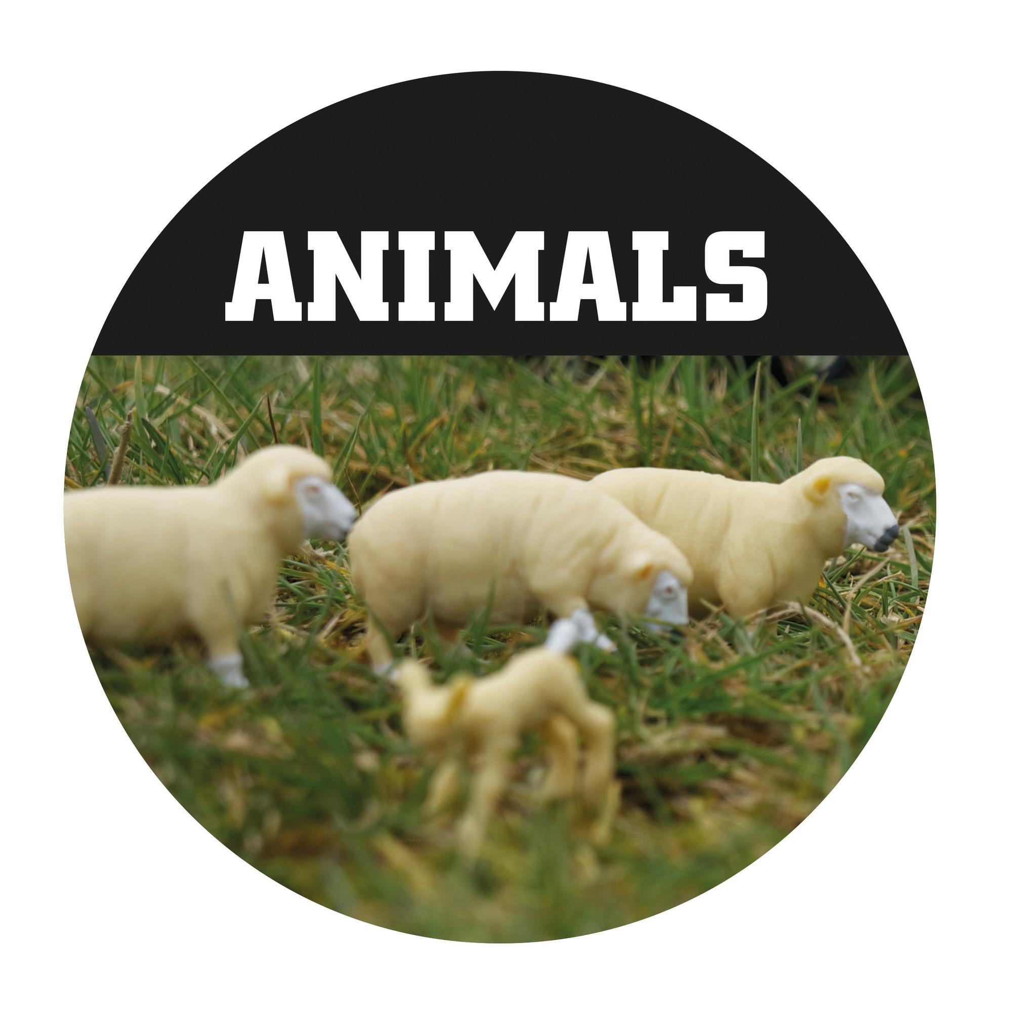 rs10889-britains-animals-lpr-1-.jpg